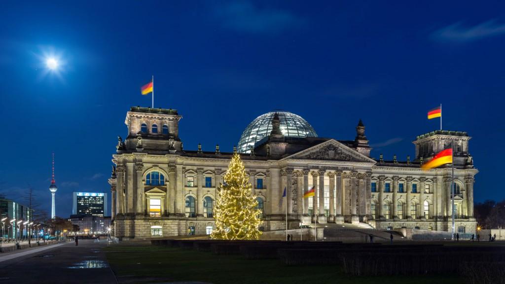 christmas trees in berlin